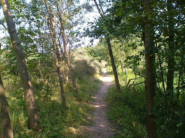 Nuit de Santpoort (NL)100/110km : 5-6 aout 2011 20